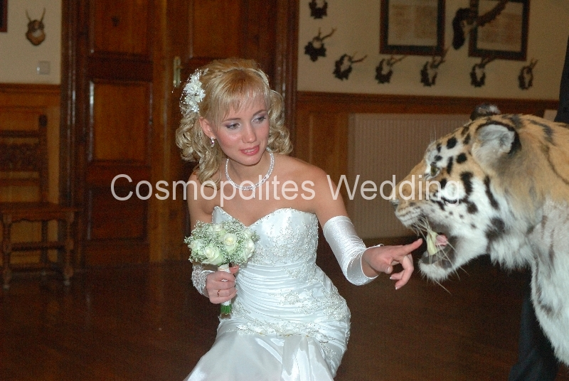 Свадьба в замке Детенице