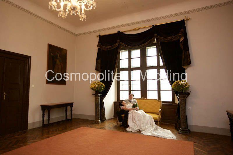 Wedding-in-castle-Brandys-nad-Labem-svadebnaya-tsetemonija