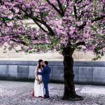 Свадьба Александра и Ольги — 9.5.2013 в Нусельской ратуше Праги - фото Свадьба Александра и Ольги — 9.5.2013 в Нусельской ратуше Праги №2514