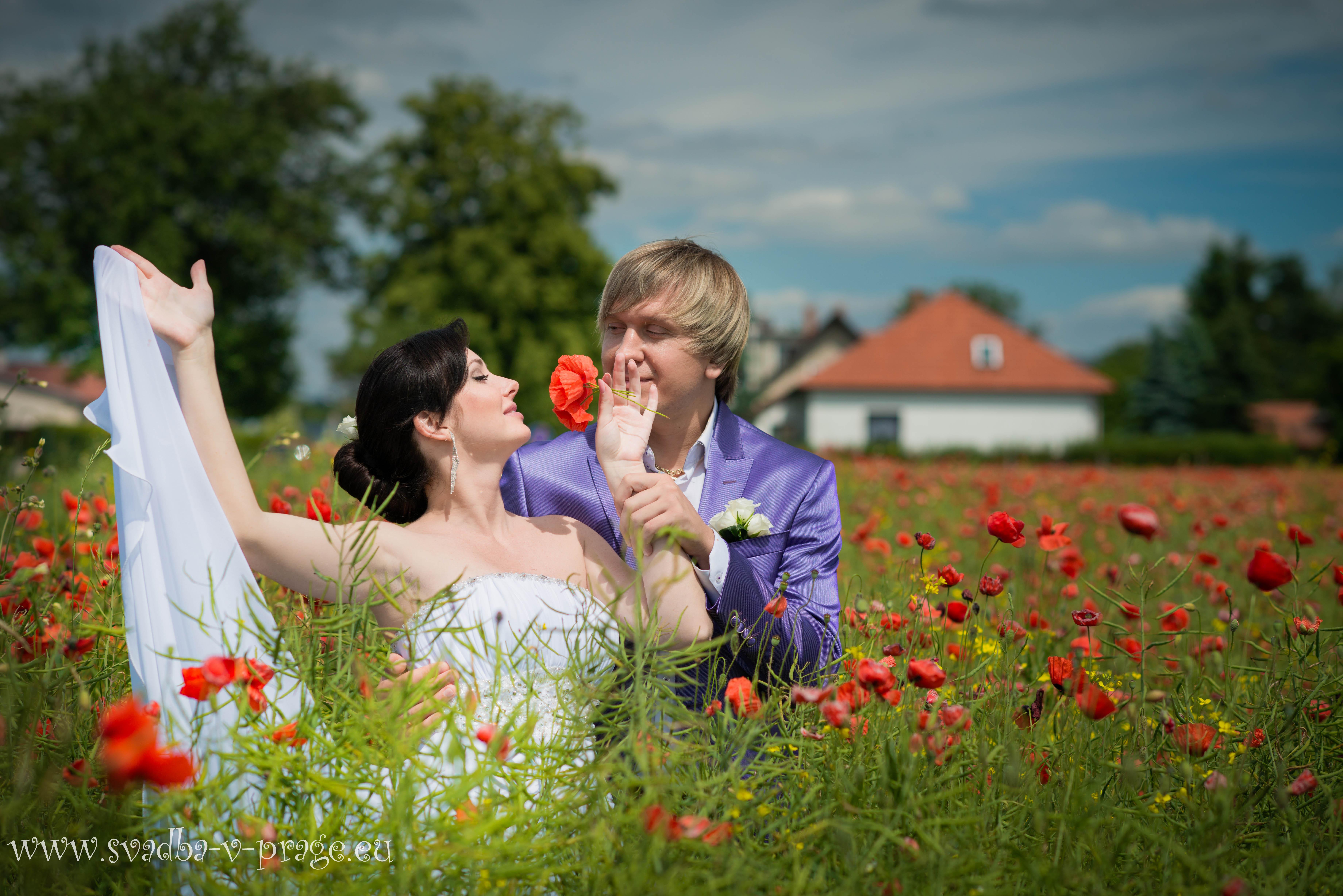 Свадьба в замке Карлштейн Андрея и Олеси 14.6.2013 - фото Свадьба в замке Карлштейн